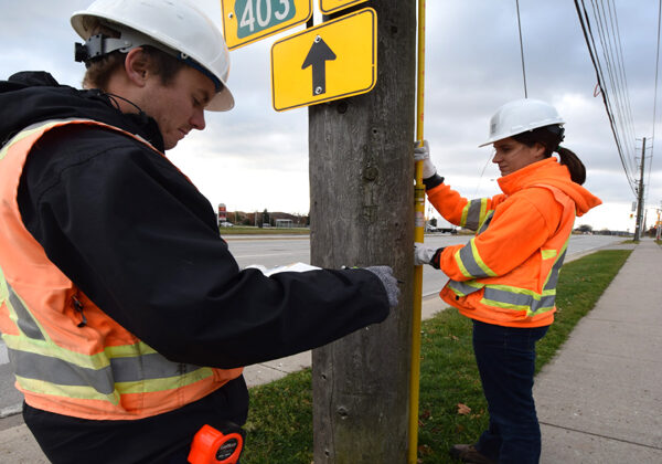 Photo of UTS Consultants Inc. engineers performing pole inspection.